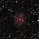 Cocoon Nebula,                                Ray Blais