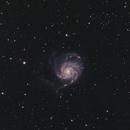 Pinwheel Galaxy (M101),                                Kristian Vasskog