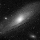 M31 - 5min. Single L,                                Simon Großlercher