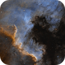 The North America and Pelican Nebulae in SHO,                                Alex Roberts