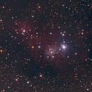 NGC 2264 Christmas Tree Cluster,                                Joerg Meier