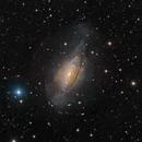 NGC 3521,                                Alex Woronow