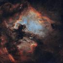 NGC 7000 North America Nebula - IC 5070 Pelican Nebula 20200718 9000s LOHS 01.3.2,                                Allan Alaoui