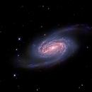 NGC2903 - UofU Eccles Observatory,                                Tony Sarra