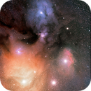 Antares e Rho Ophiuchi,                                Stefano Pesci