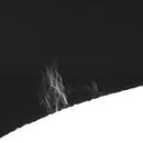 Solar prominence 20210425,                                Sergio Alessandrelli