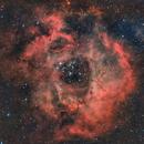 NGC 2239 ROSSETTE,                                Abel