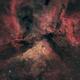 NGC3372, the Great Carina nebula,                                Gary Plummer