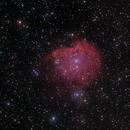 NGC 2174 (Monkey Head Nebula),                                Roger Menard