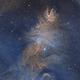 NGC 2264 in narrowband,                                Samuli Vuorinen