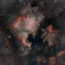 NGC 7000 North America & Pelican Nebula,                                star-watcher.ch