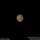 Mars #14,                                Molly Wakeling