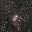 Cone nebula,                                Fernando