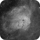 IC 410 - Tadpole Nebula,                                Michael Hoppe