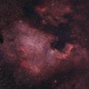 First North American Nebula,                                Mike Coates