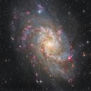 M 33 Triangulum Galaxy,                                Stefan-Harry-Thrun