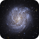 NGC 2082,                                Steven Marx