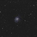 M101 Pinwheel Galaxy,                                Martin Palenik