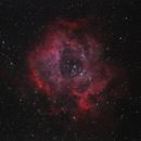 Rosette Nebula,                                Keith Hanssen
