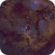 IC 1396, The Elephant Trunk Nebula in SHO,                                riot1013