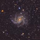 NGC 6946 / Arp 29,                                Fabio Mirra