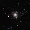 NGC 7006,                                Gary Imm