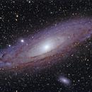 M31 The Great Andromeda Galaxy,                                Paul Winn