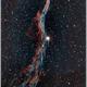 NGC6960, part of the Veil Nebula, bicolor 20190811 (Ha) & 20190813 (O3),                                Geert Vandenbulcke