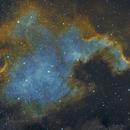 NGC 7000 False Color,                                TeamHawkins