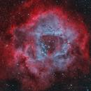 Rosette Nebula - Deep Sky West Remote Observatory,                                Deep Sky West (Lloyd)