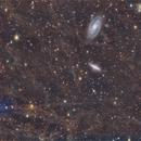 M81-M82&FLUX,                                Piero Venturi