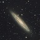 NGC253  The Sculptor Galaxy,                                Ray Heinle