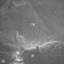 Horsehead Nebula (Barnard 33),                                Cy Borg