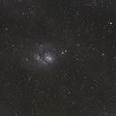 M8 Lagoon Nebula,                                B.P. Murphy