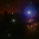 HorseHead, Flame and Bloom Nebulas,                                David Stevenson