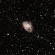 M1, Crab nebula,                                floreone