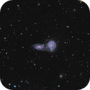 ARP271 - Interacting Spirals,                                Jason Guenzel