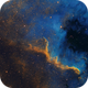 Cygnus Wall,                                Dick Newell