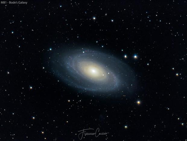 M81 - Bode's Galaxy,                                Francesco Cuccio
