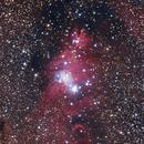 NGC2264 Cone Nebula,                                Djt