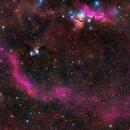 Barnard's Loop with M78, Horsehead Nebula, and Surroundings,                                David McGarvey