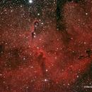 IC 1396 Elefantenrüsselnebel,                                Werner  Behnke