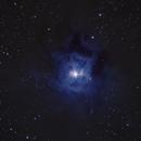 Iris Nebula NGC7023,                                Anthony Quintile