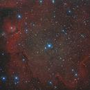 IC 1871, Sh 2-201, Embryo Nebulae,                                Enrico Scheibel