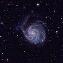M101 & Vicinity (UMa/Boo) in LRGBHa - TS 130/910 First Light,                                Ben Koltenbah