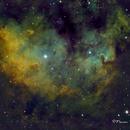 Cederblad (CED) 214 Nebula in Cepheus,                                Francois Theriault