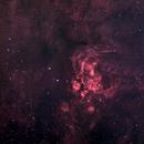 NGC 6357,                                Martin Williams