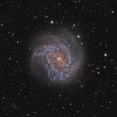 Messier 83,                                Scott M. Stirling