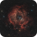 My Rosette Nebula,                                mihai
