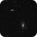 Messier 81 and 82 - Bode's and Cigar Galaxy,                                Evelyn Decker